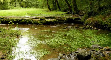 Le camping en Haute-Marne mélange de bien-être et nature
